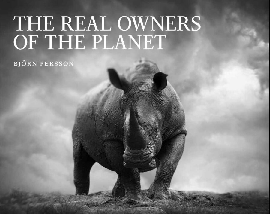 The Real Owners of the Planet, bound