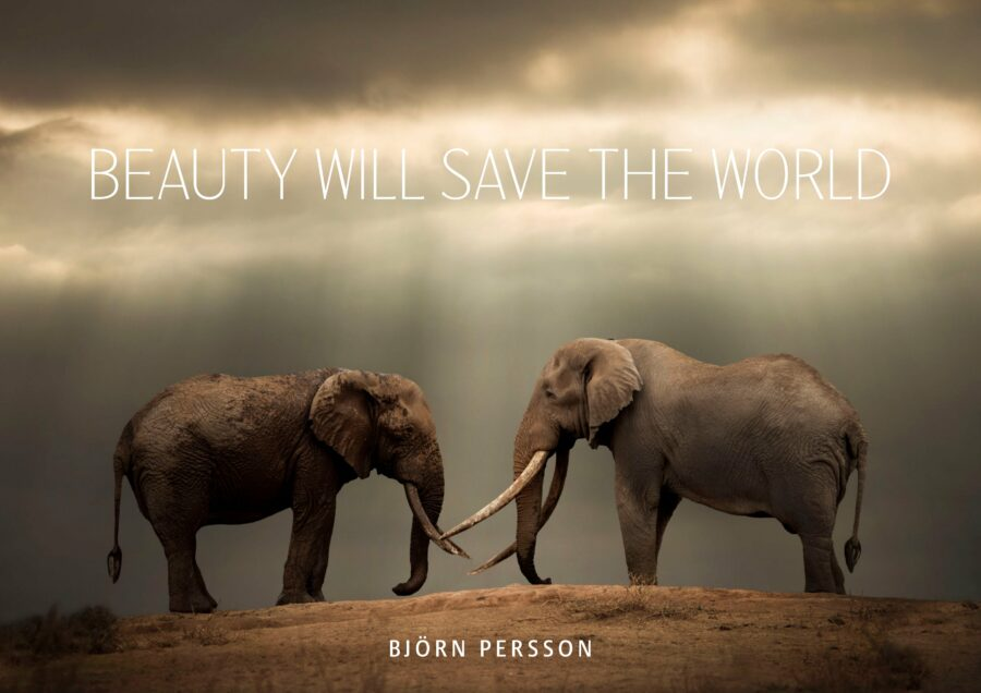 Beauty will save the world, bound